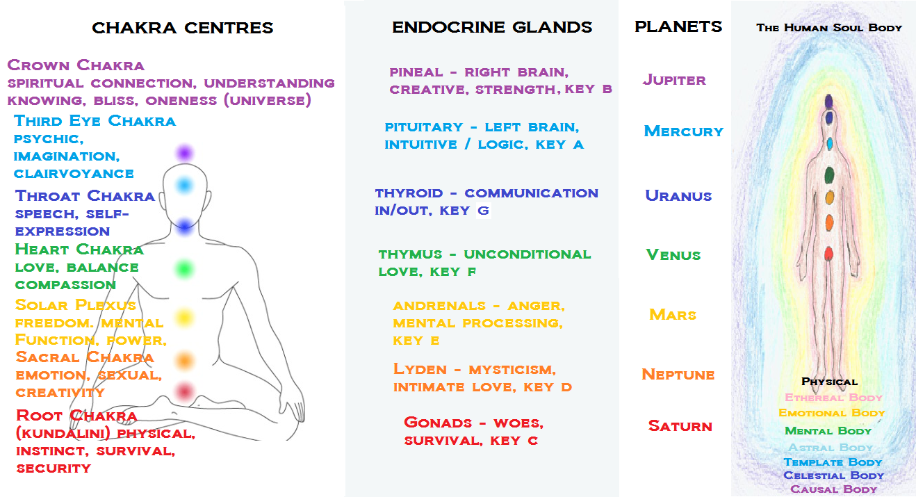 How Each Chakra Maps To An Endocrine Gland And Planet What How